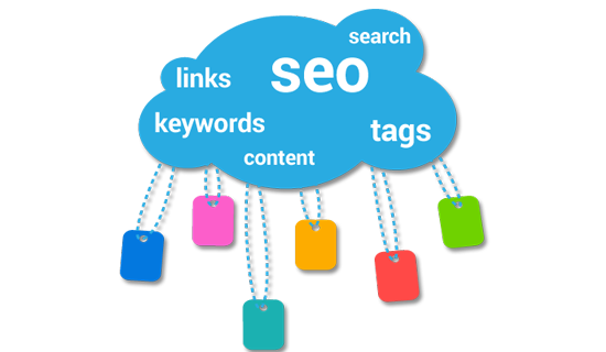 seo expert in delhi india