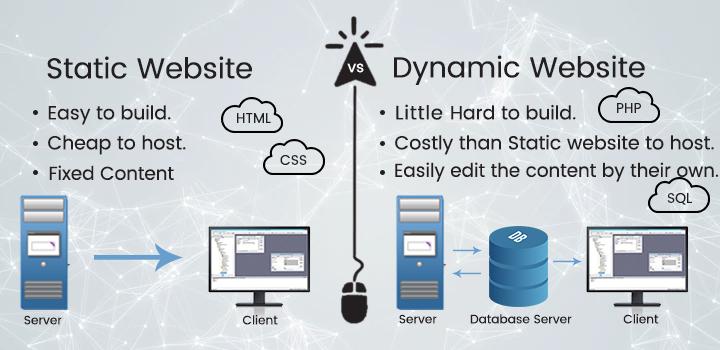 Static Website Vs. Dynamic Website: Who Takes the Cake!